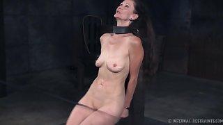 Incredibly voracious descendant Paintoy Emma deserves some hardcore BDSM